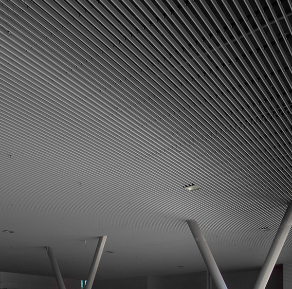 Exterior Open Ceilings